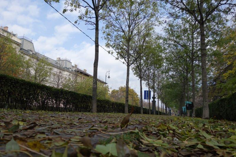 Automne à Budapest photo libre de droits