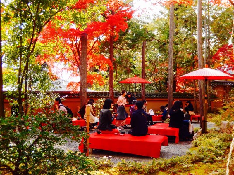 Automne au Japon photos libres de droits