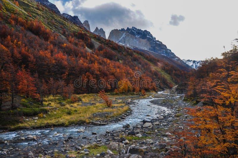 Automne/automne dans Parque Nacional Torres del Paine, Chili image stock