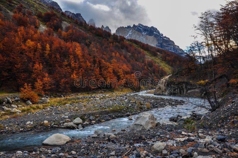 Automne/automne dans Parque Nacional Torres del Paine, Chili photographie stock