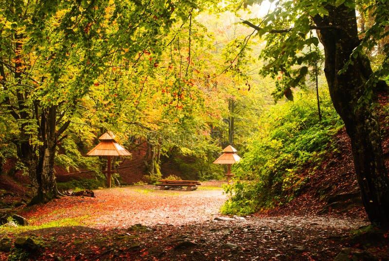 Automne campant avec la pluie photo stock