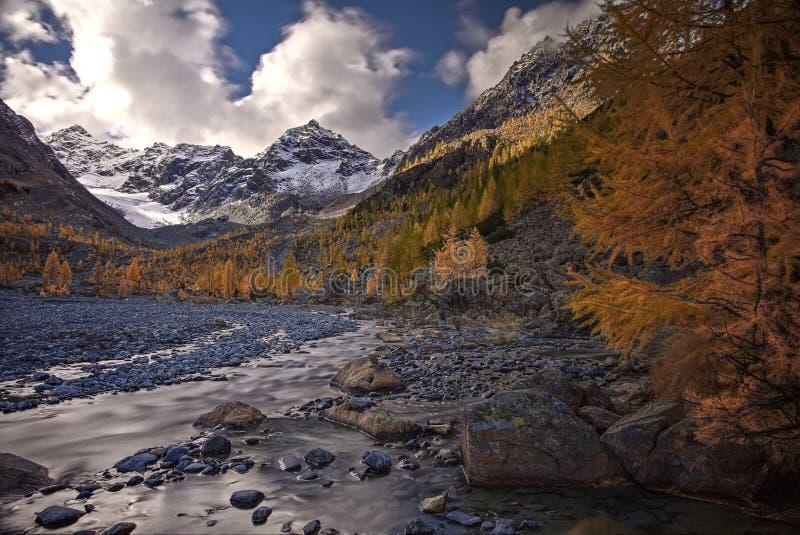 Automne d'or dans les montagnes Lat de mélèze sibérien E Chaîne orientale de Sayan Été indien de la Saint-Martin photo stock