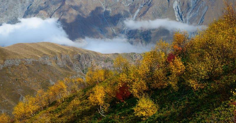 Automne d'or en montagnes photo stock