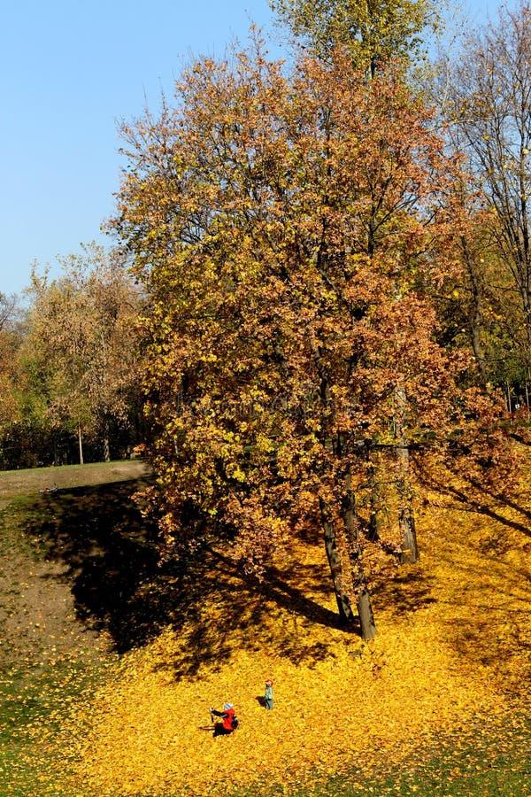 Automne dans la réservation naturel-historique Tsaritsyno à Moscou photo libre de droits