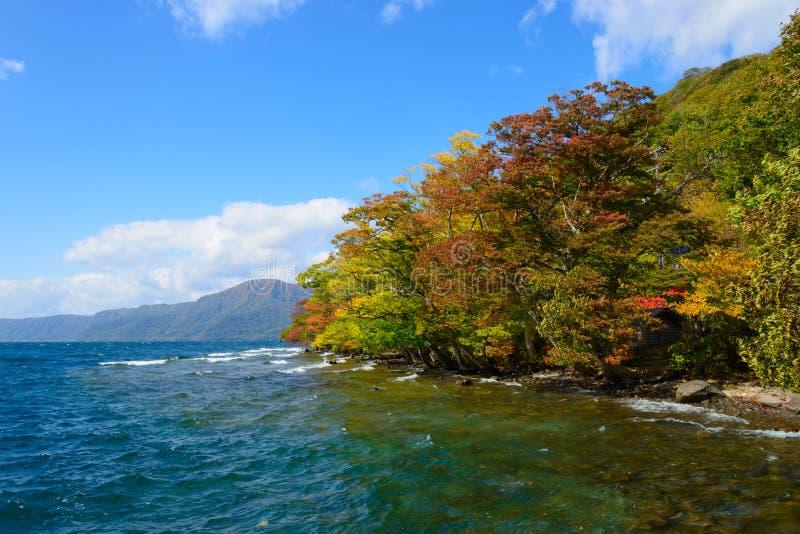 Automne dans le lac Towada photos stock