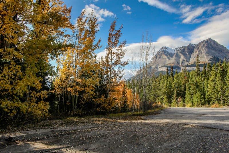 Automne dans les montagnes du Canada d'Alberta photos stock