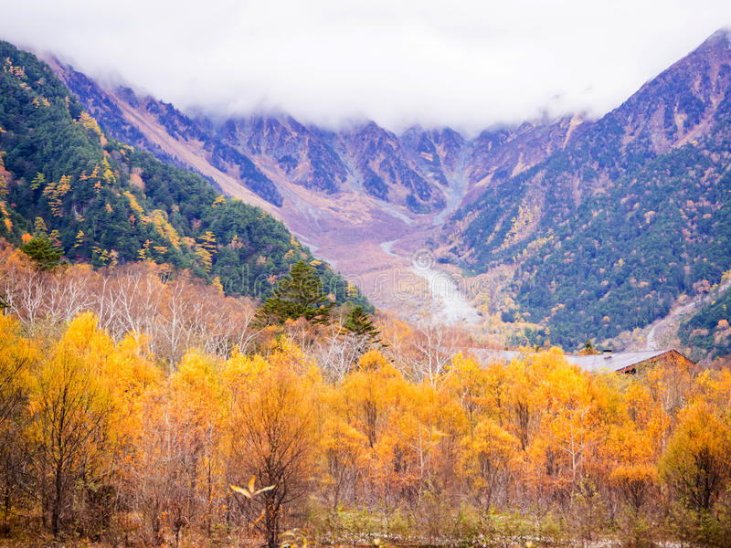 automne de kamikochi, Japon photo stock