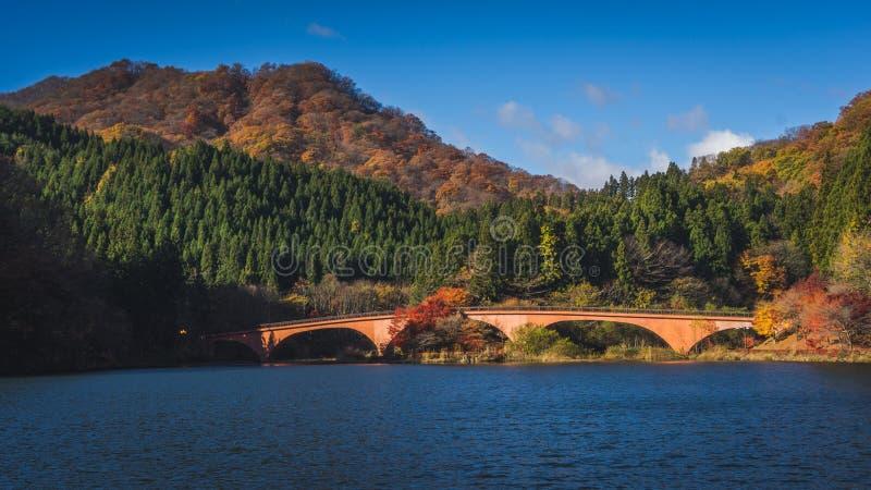 Automne de lac Usui photographie stock libre de droits