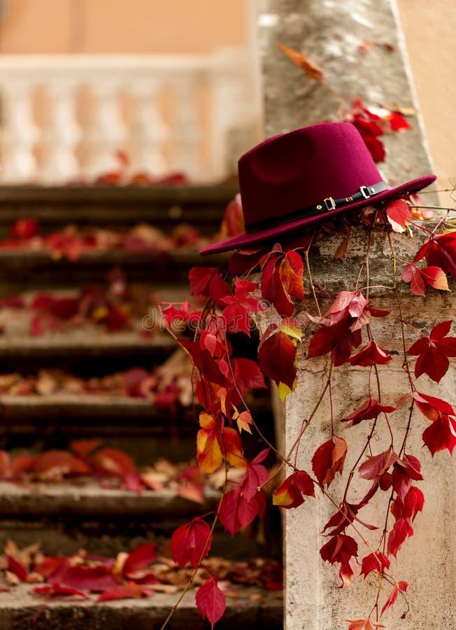 Automne de lame d'automne Le rouge et le jaune part sur le vieux sto détruit photos libres de droits