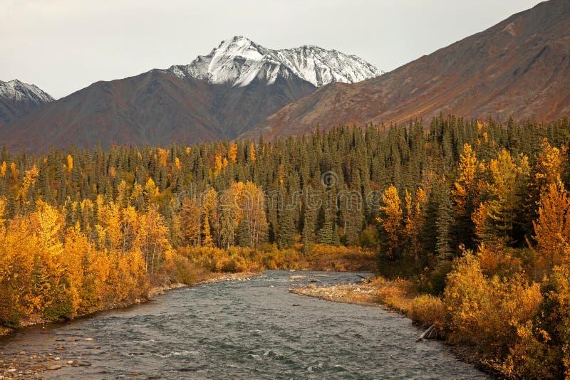 Automne en Alaska photographie stock