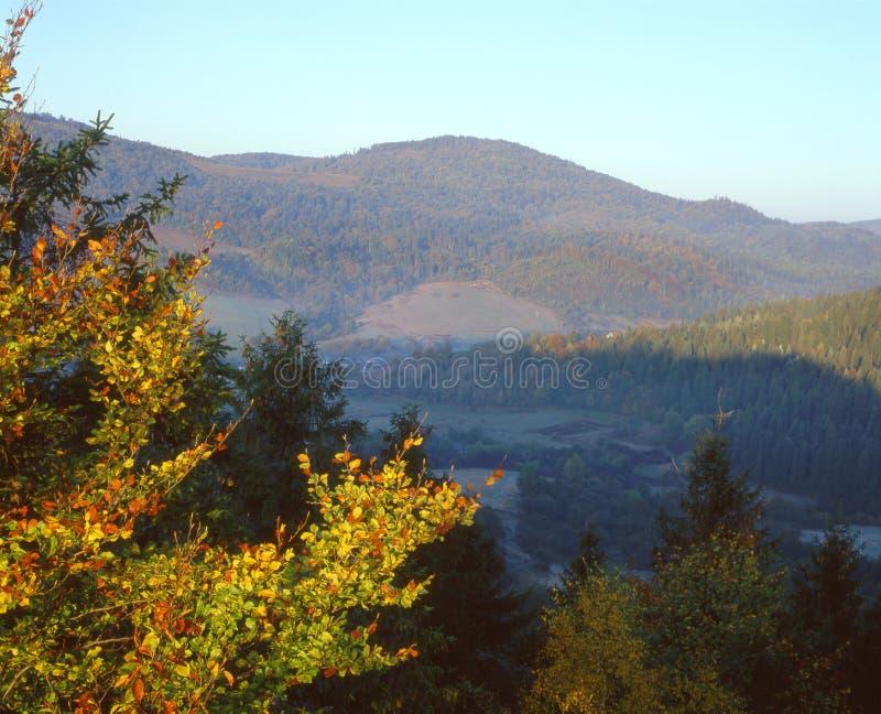 Automne en montagnes carpathiennes image libre de droits