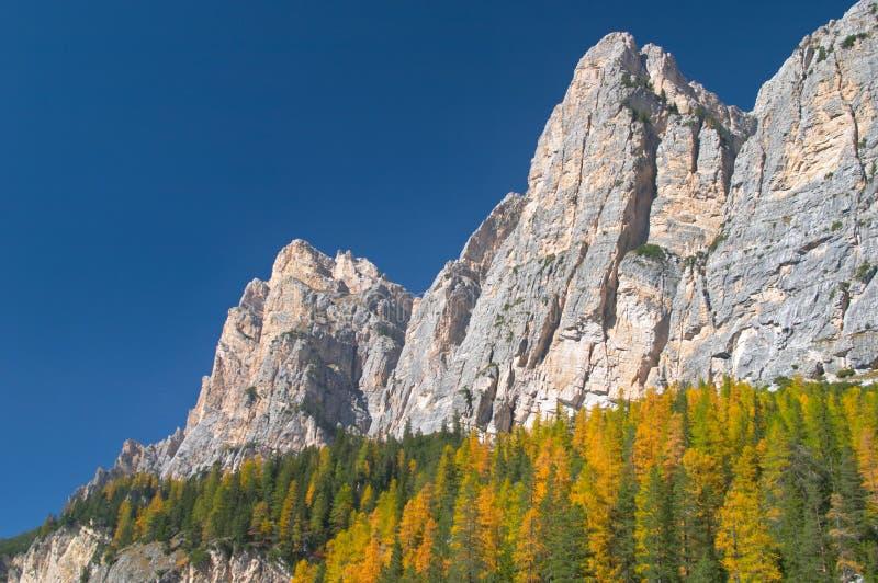 Automne en montagnes de dolomites photographie stock libre de droits