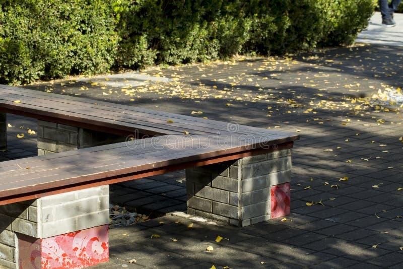 Automne en parc photos stock