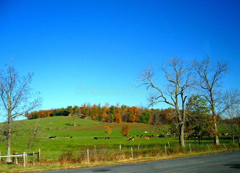 Automne en Pennsylvanie 4 images libres de droits