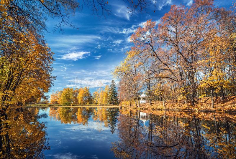 Automne ensoleillé en parc au-dessus de lac photos libres de droits
