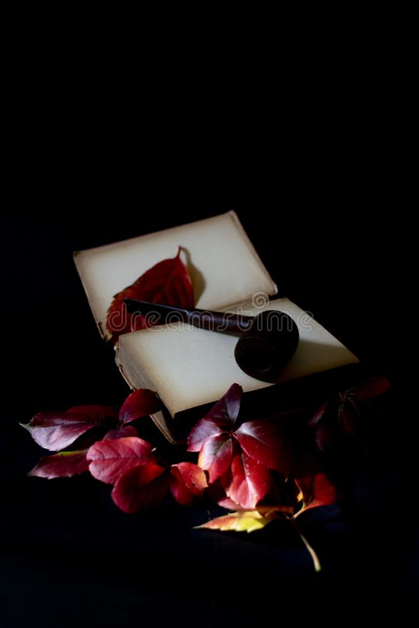 Automne, feuilles de chute, soirée détendant lisant un livre photos stock