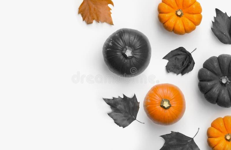 Automne Halloween Composition Bordure Avec Pumpkins Et Feuilles images libres de droits