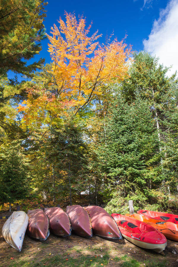 automne Ontario images stock