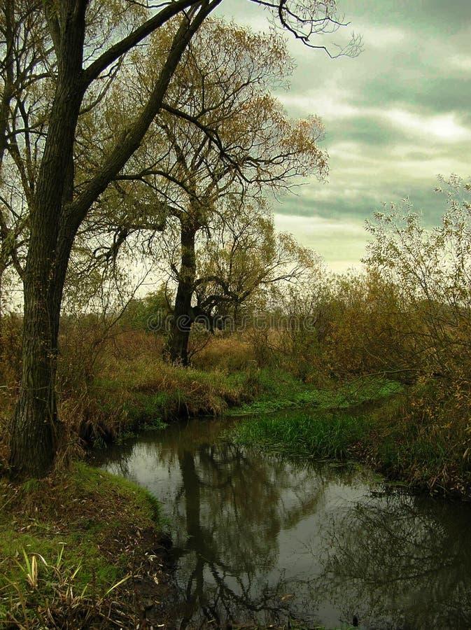 Automne par le fleuve photographie stock libre de droits