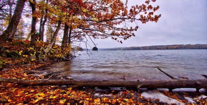 """Automne par le lac du """"rr de à en Suède image stock"""