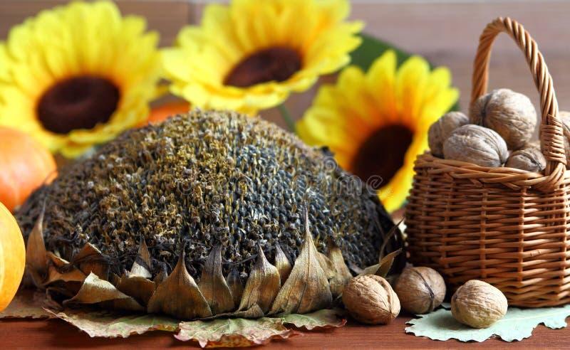 Automne Potiron, noix et fleurs de tournesol photos stock