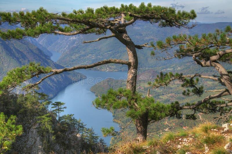 Automne près de lac Perucac, Serbie occidentale images libres de droits