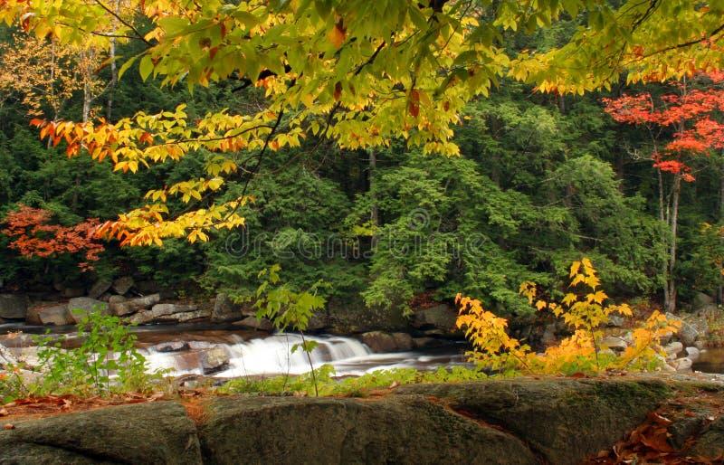automne scénique images stock