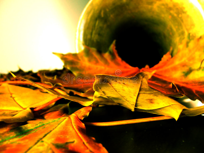 Automne still-life4 images stock