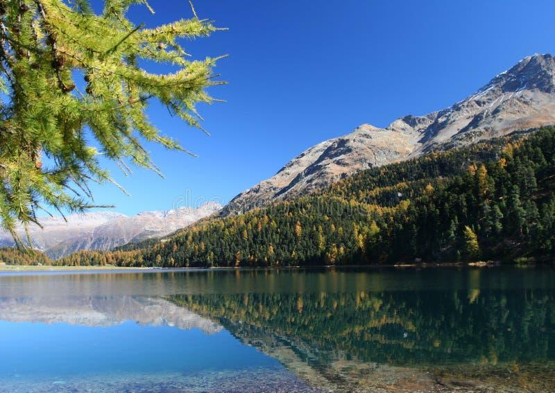 Automne sur le lac suisse photo stock
