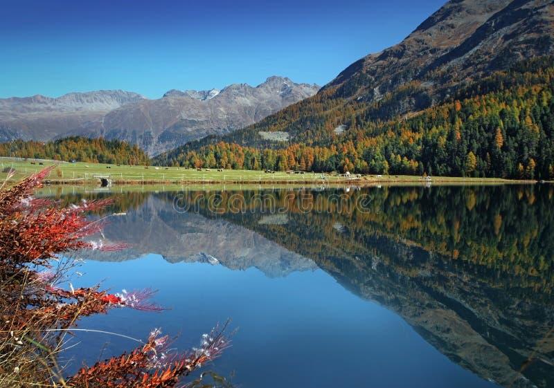 Automne sur le lac suisse photo libre de droits