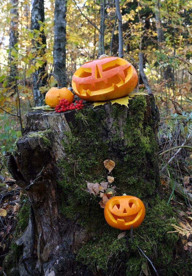 Download Automne Veille De La Toussaint Image stock - Image du halloween, vacances: 45358433