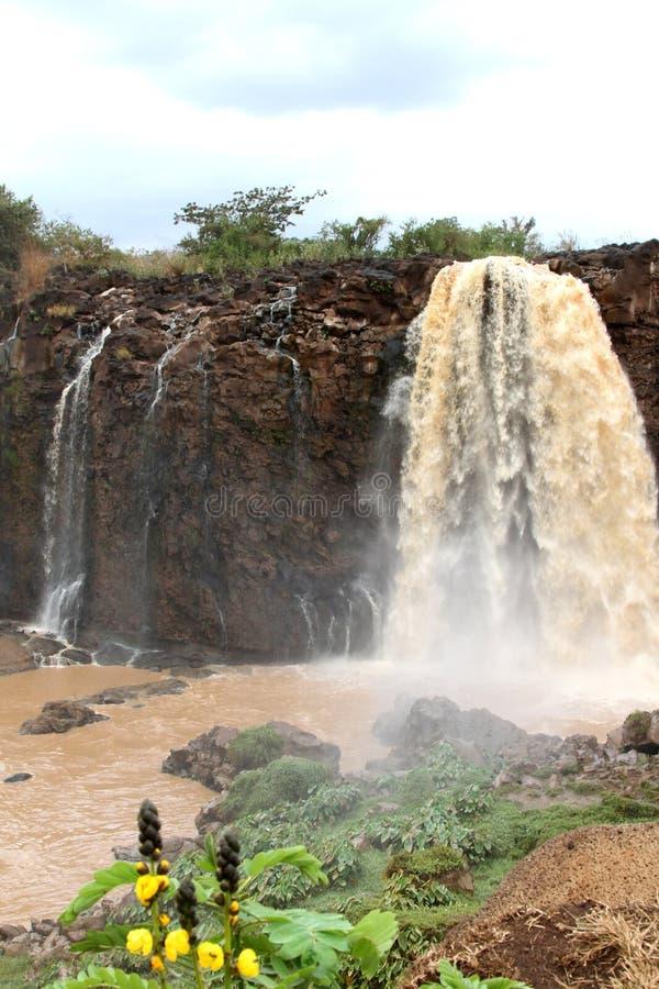 Automnes abay de Tiss sur le Nil bleu, Ethiopie image libre de droits