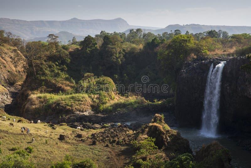 Automnes bleus du Nil photographie stock libre de droits