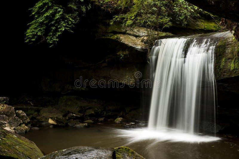 Automnes d'abattage de chien - cascade - Daniel Boone National Forest - Kentucky du sud photo stock