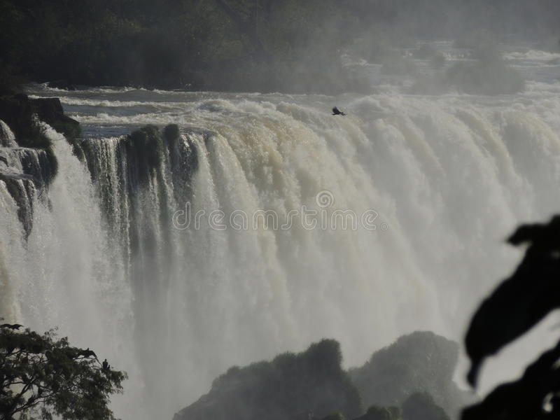 Automnes d'Iguaçu photos stock