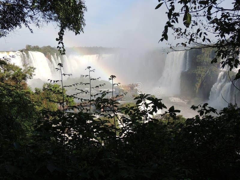 Automnes d'Iguaçu photo stock