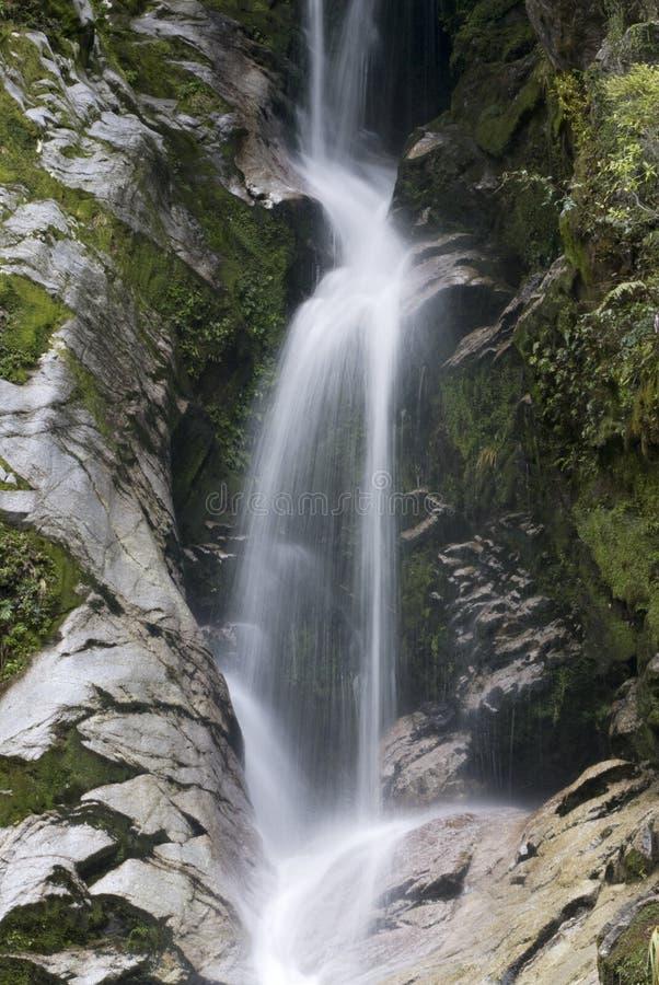 Automnes de Dorothy, lac Kaniere, île du sud, Zea neuf photographie stock libre de droits