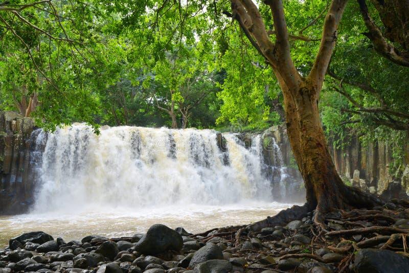 Automnes de Rochester Grande cascade près de ville Souillac sur l'île des Îles Maurice photos libres de droits