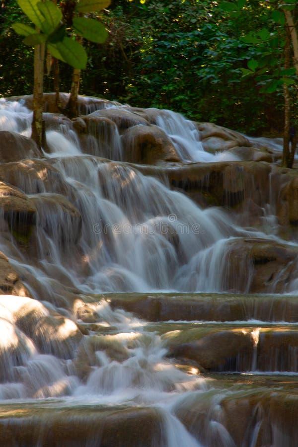 Automnes du fleuve de Dunn image stock