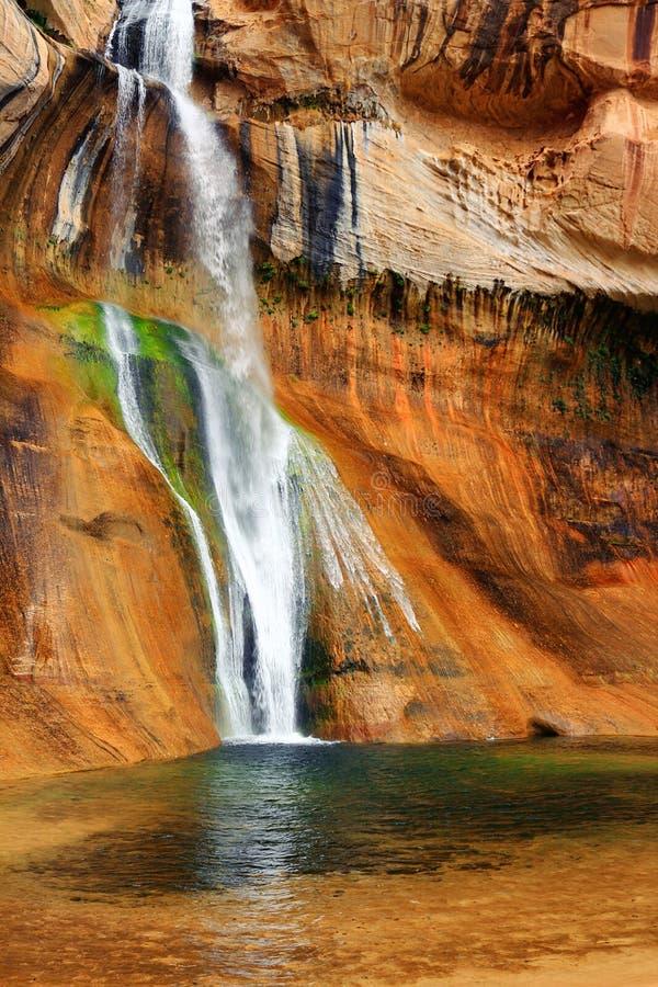 Automnes inférieurs de crique de veau, monument national d'Escalante, Utah photos stock