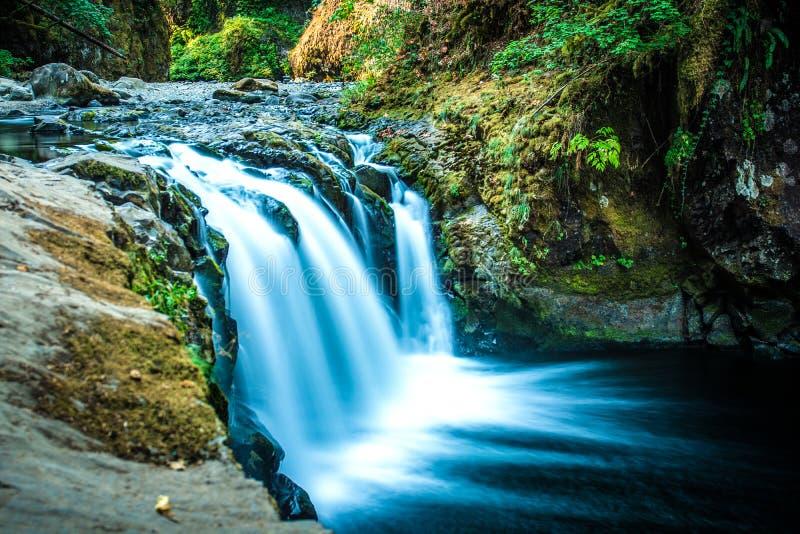 Automnes inférieurs de Punchbowl, traînée d'Eagle Creek images stock