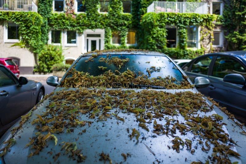 Automobile abbandonata a Amburgo fotografia stock