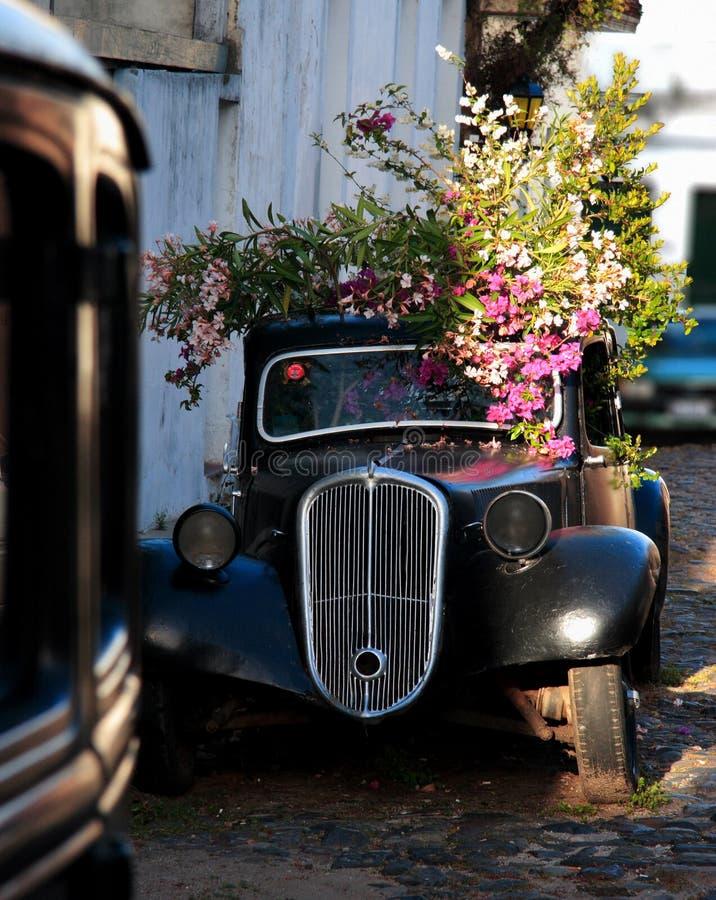 Automobile di Abandend nella via del quarto storico della città del del Sacramento, Uruguai di Colonia fotografie stock libere da diritti