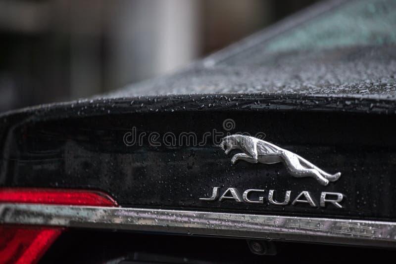 Automobile di Jaguar a Berlino Germania fotografia stock