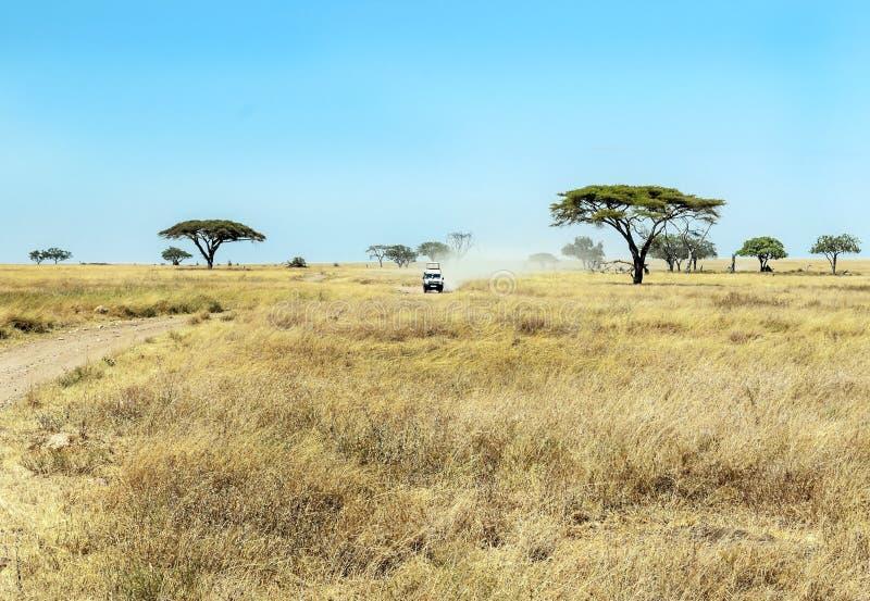 Automobile di safari in Tanzania fotografia stock libera da diritti