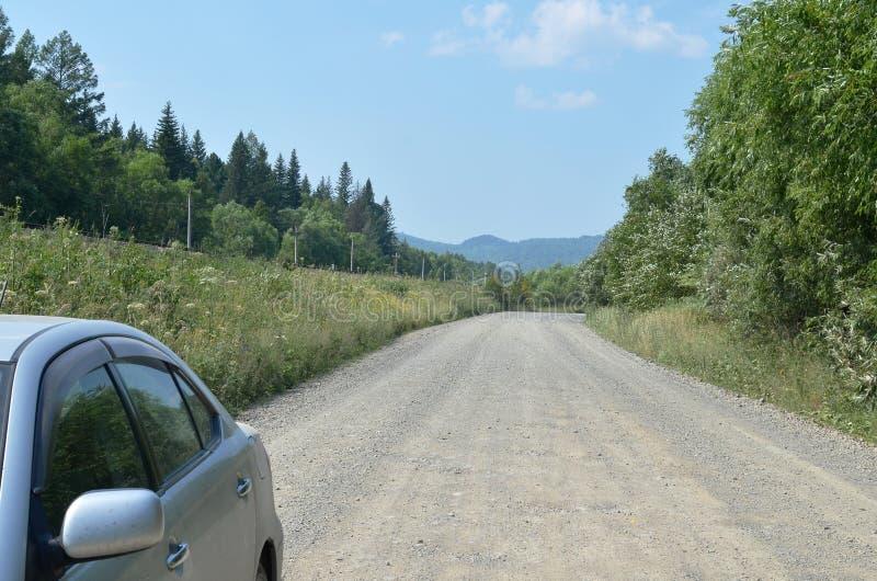 Automobile la curvatura di una strada non asfaltata in una foresta immagini stock