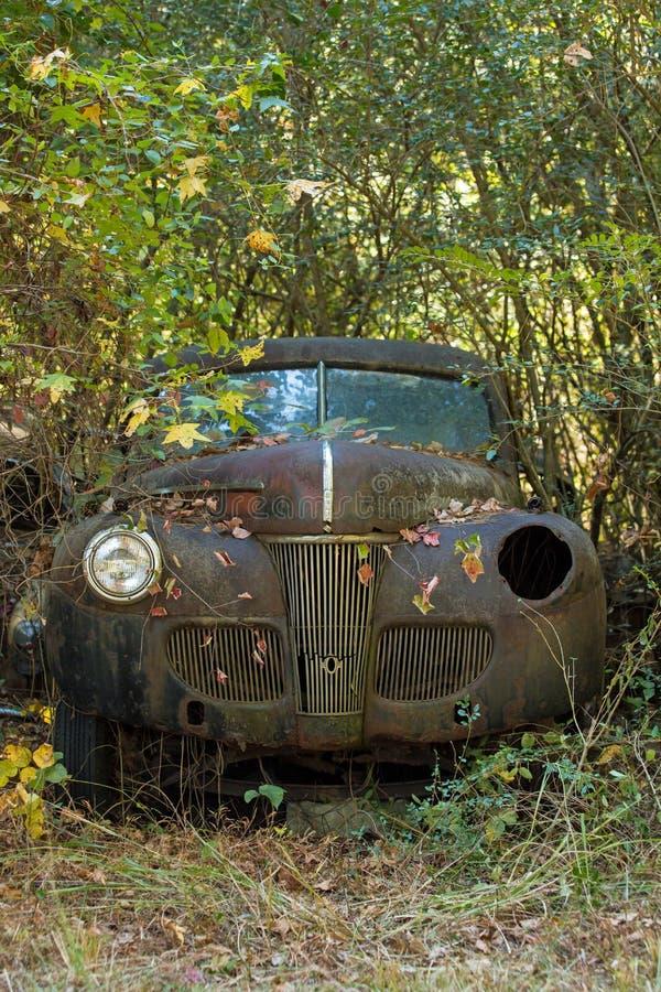 Automobile nel legno fotografie stock