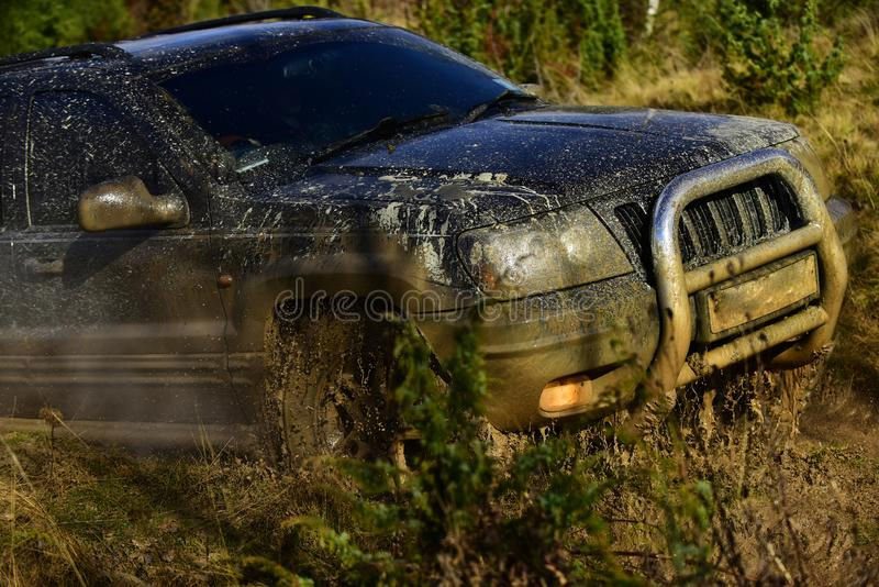 Automobile racing, car wash and off road vehicle concept. SUV takes part in racing on fall nature background Car with. Automobile racing, car wash and off road royalty free stock images