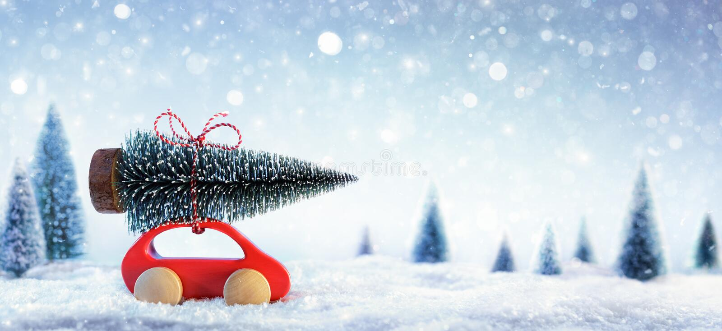 Automobile rossa che porta un albero di Natale fotografie stock libere da diritti