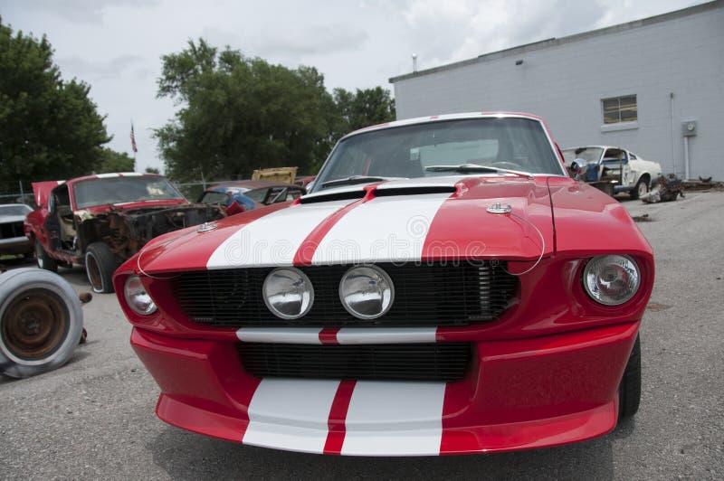 Automobile rossa del muscolo immagine stock